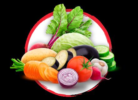 Verduras ecológicas a domicilio